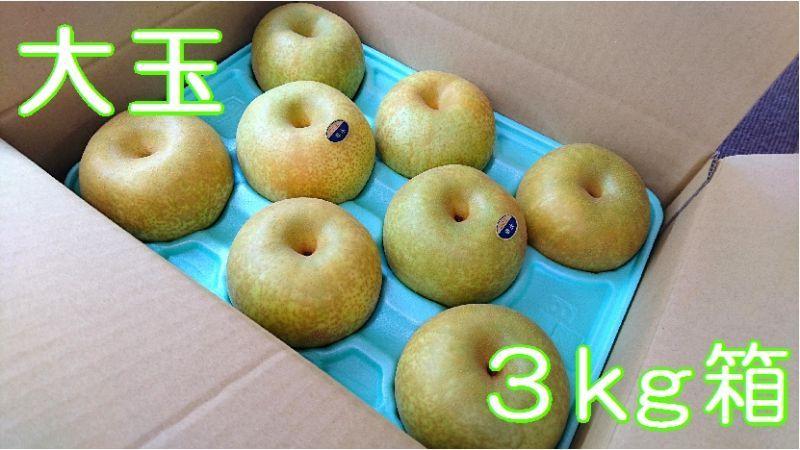 画像1: 幸水 大玉3kg箱(8〜6個入り)