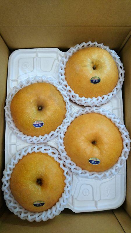 画像2: 新高 大玉3.5kg箱(5〜4個入り)