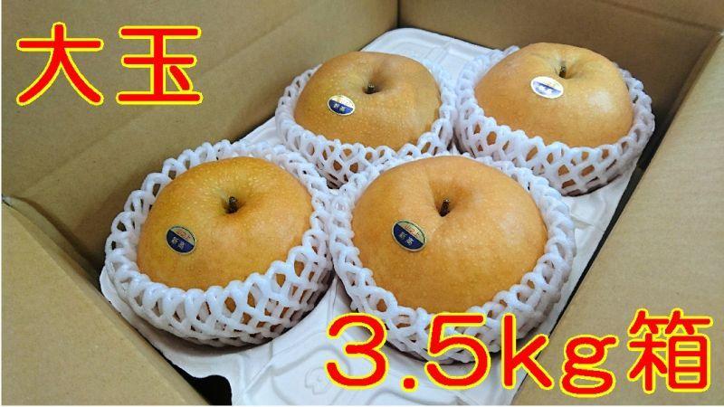 画像1: 新高 大玉3.5kg箱(5〜4個入り)